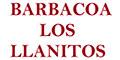 BARBACOA LOS LLANITOS